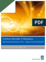 dnv-position_paper_co2_utilization_tcm4-445820.pdf