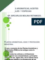 Plantas aromáticas y aceites esenciales
