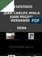 Tiplogia de Multimedia