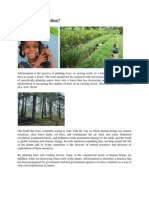 What is Afforestation.docx