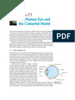 human eye.pdf