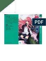 Zero no Tsukaima - Volume 11