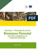 Enersilva Portugues.pdf