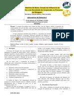 Estudo da Influencia do Tamanho das Bolas e da Densidade de Suspensão no Processo de Moagem [Andre,Estevão,João].pdf