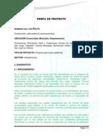 Perfil de Proyecto Caminamientos 2013 Antecedentes en Verde