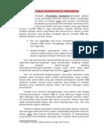 y2k Virus Komputer Di Indonesia