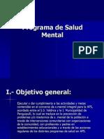 Programa de Salud Mental 2010.ppt
