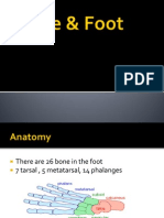 ankle and foot.ppt