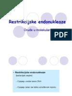 Restrikcijske endonukleaze