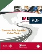 Panorama de La Seguridad Vial MEXICO