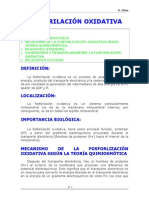 06-FOSFORILACIÓN OXIDATIVA