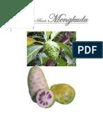 Khasiat dari Buah Mengkudu.pdf