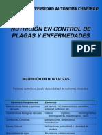 Nutrición en control plagas y enf hortalizas