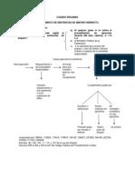 CUMPLIMIENTO SENTENCIAS DE AMPARO CUADRO RESUMEN (2).docx