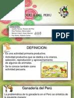 La Ganaderi a Del Peru-geografia
