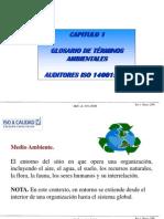 Curso Auditores SGA 14001 Cap 1 Glosario