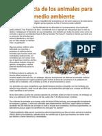 Importancia de Los Animales Para El Medio Ambiente