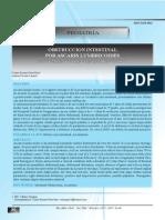Dialnet-ObstruccionIntestinalPorAscarisLumbricoides-3646081