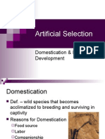 2 Artificial Selection