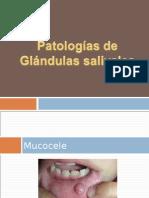 Patologías de las glandulas salivales