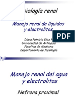 Manejo de Electrolitos AUR - Copia