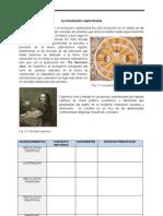 II.teorias Del Conocimiento Social