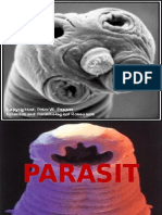 Parasitosis III Clase