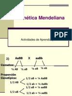 4-ejercicios-genetica-mendeliana