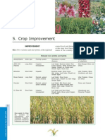 Crop Improvement.pdf