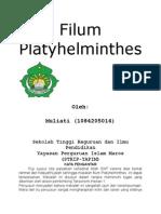 Filum Platyhelminthes.docx