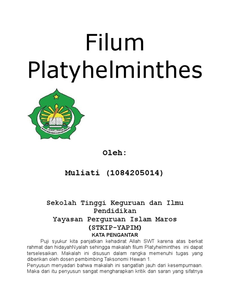 filum platyhelminthes doc