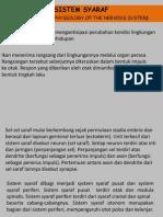 sistem saraf.pptx