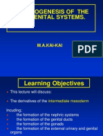lect_11.ppt