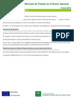 Informe desempleo agricola tercer trimestre 2013 en Andalucía