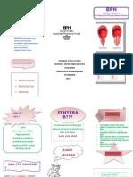 Bph-Leaflet