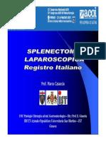 registro italiano per acoi 2013