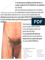 GUAINA FEMORALE.pdf