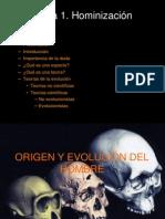 tema 1  hominizacin
