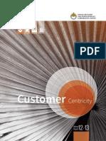 DFPCL Annual Report 2012 13