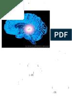 Μελατονίνη και ακτινοβολίες, ακτινοθεραπεία..pdf