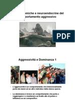 30aCompAggressivo.pdf