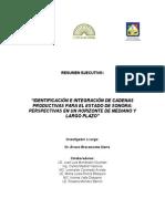 Identificacion e Integracion de Cadenas Productivas Para El Edo. de Sonora