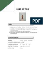 formato_hoja_vida