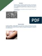 Colera Hepatitis y Dermacrosis