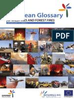 Eufofinet Fire Glossary