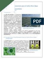 fotobioreactorparacultivomicroalgas-110908182807-phpapp02.doc