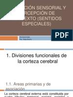 Asociación Sensorial y Percepción de contexto (Sentidos
