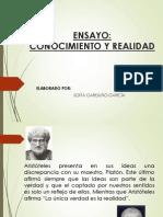 Diapositivas Ensayo