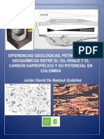 DIFERENCIAS ENTRE EL OIL-SHALE Y EL CARBÓN SAPROPÉLICO (TORBANITA Y CANNEL COAL) GEOQUIMICA, PETROLOGIA ORGÁNICA Y GEOLOGÍA