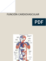 Funcion Cardiovascular